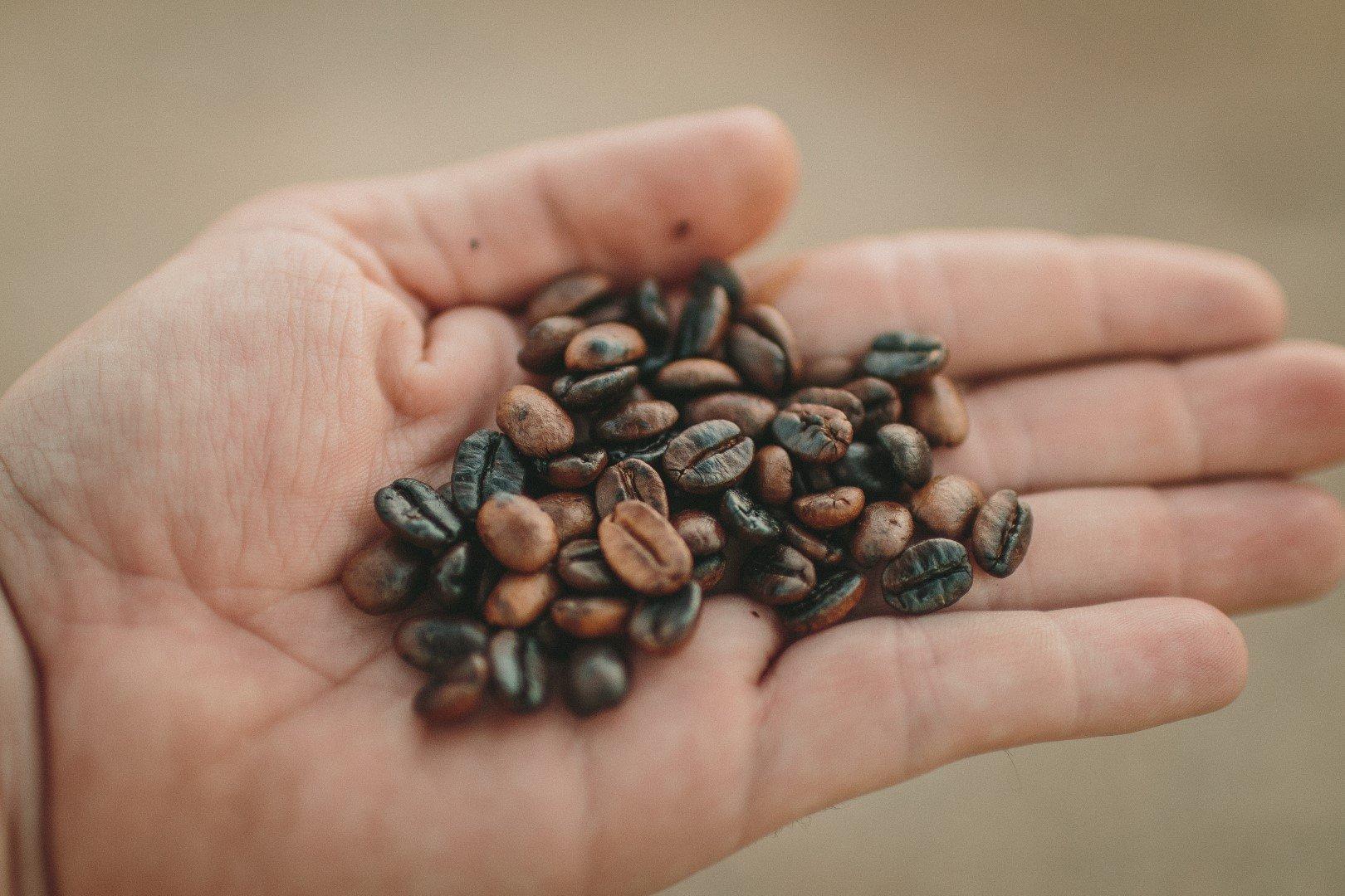 Conheça os principais tipos de torras de café!