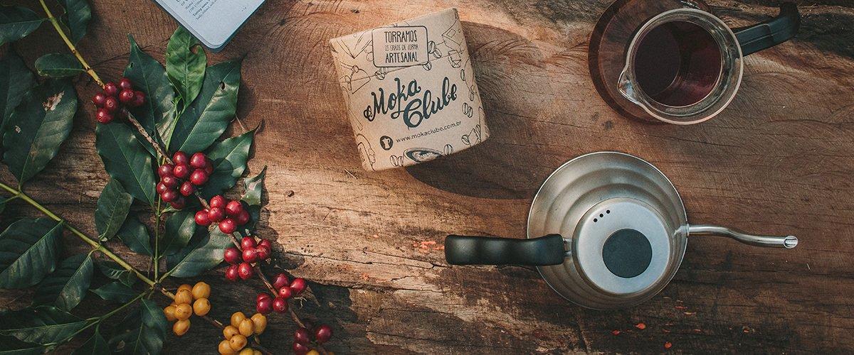 Confira o guia completo sobre as principais variedades de café!