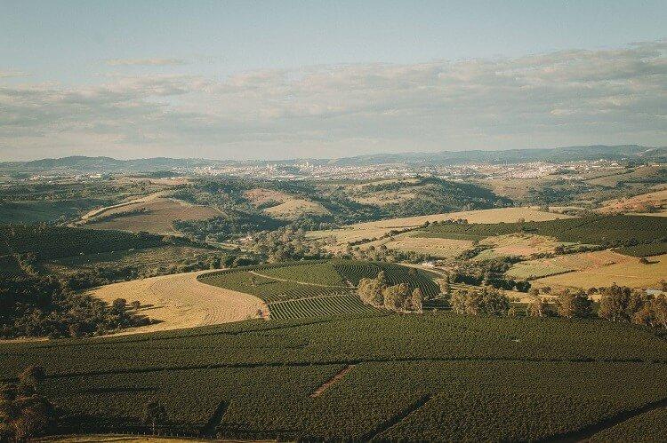 Paisagem ampla com montanhas e plantações de café.